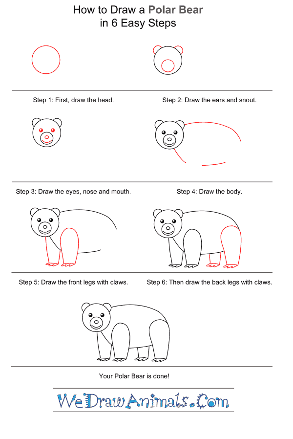 How to Draw a Polar Bear for Kids - Step-by-Step Tutorial