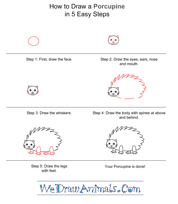 How to Draw a Porcupine for Kids - Step-by-Step Tutorial