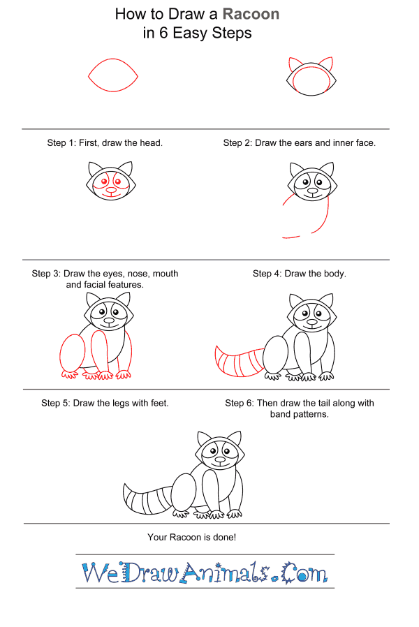 How to Draw a Raccoon for Kids - Step-by-Step Tutorial