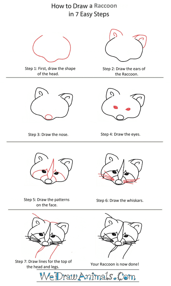 How to Draw a Raccoon Head - Step-by-Step Tutorial
