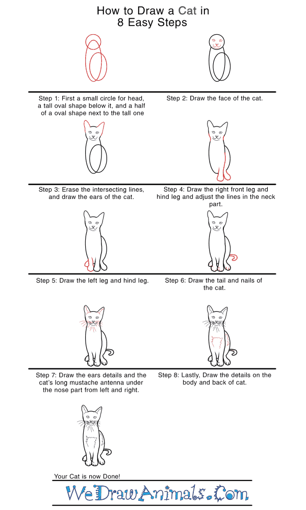 How to Draw a Realistic Cat - Step-by-Step Tutorial