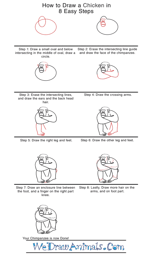 How to Draw a Realistic Chimpanzee - Step-by-Step Tutorial