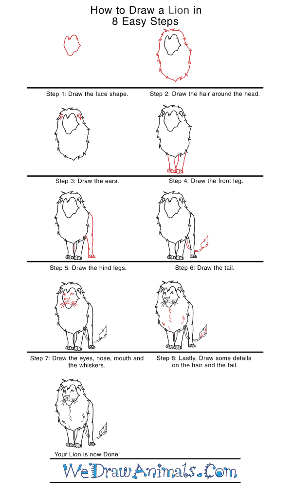How to Draw a Realistic Lion - Step-by-Step Tutorial