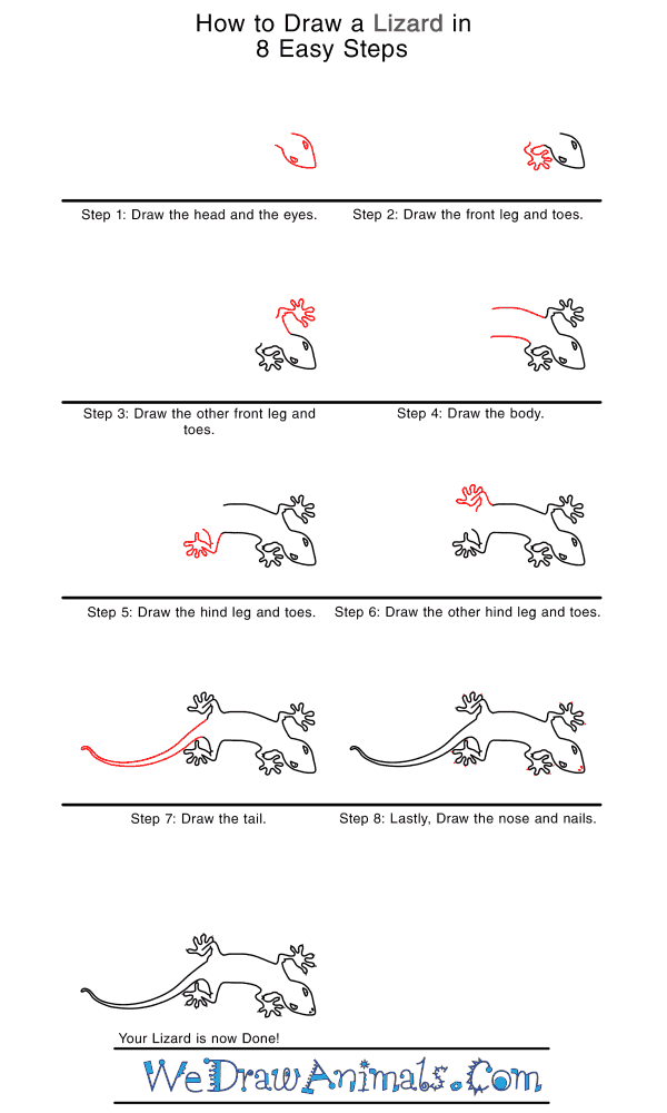 How to Draw a Realistic Lizard - Step-by-Step Tutorial