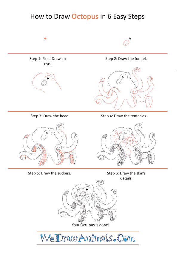 How to Draw a Realistic Octopus - Step-by-Step Tutorial