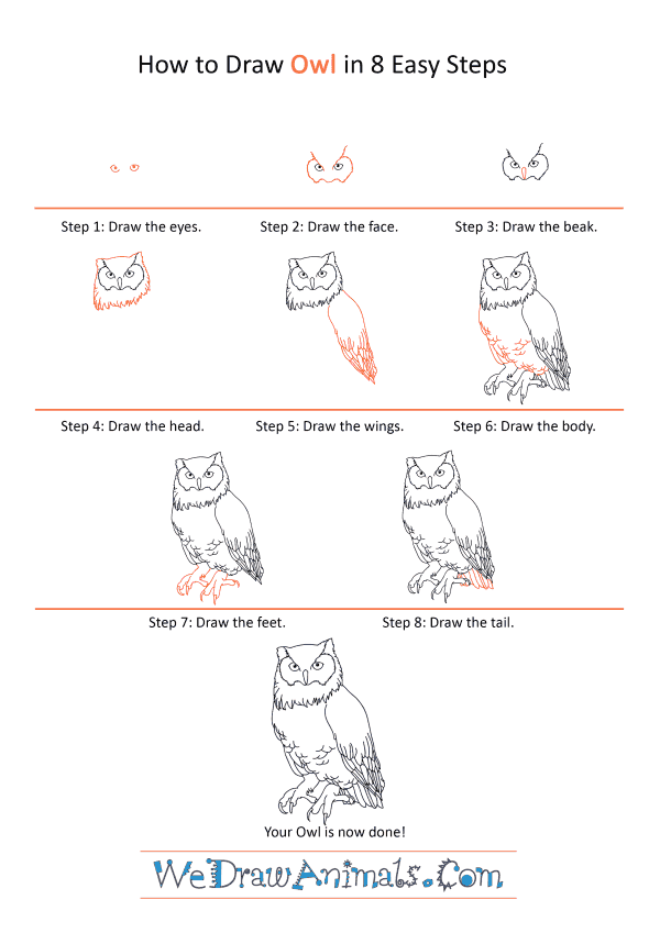 How to Draw a Realistic Owl - Step-by-Step Tutorial