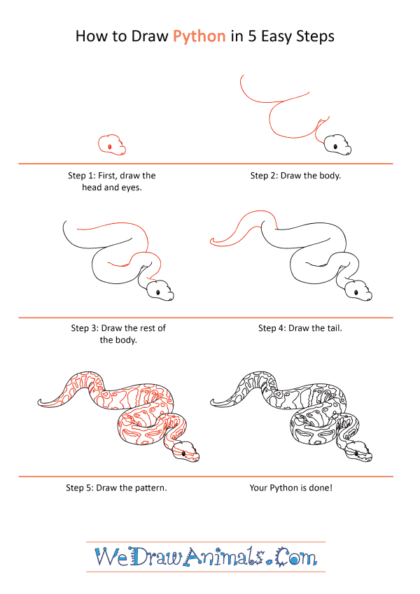 How to Draw a Realistic Python - Step-by-Step Tutorial