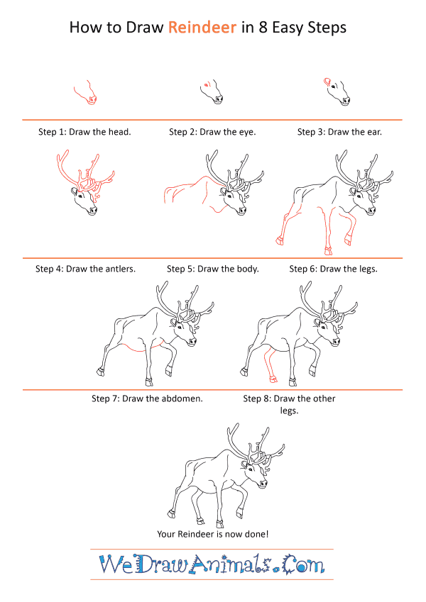 How to Draw a Realistic Reindeer - Step-by-Step Tutorial
