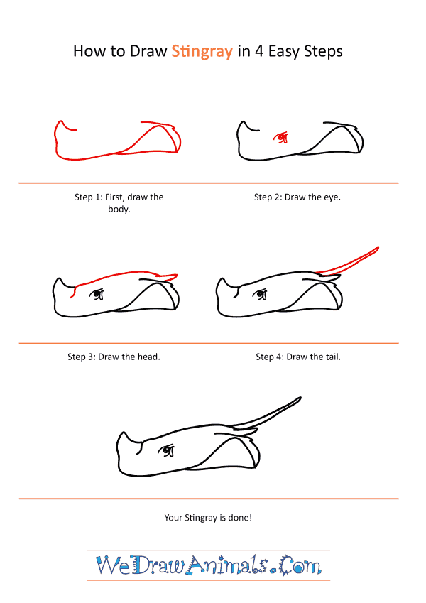 How to Draw a Realistic Stingray - Step-by-Step Tutorial
