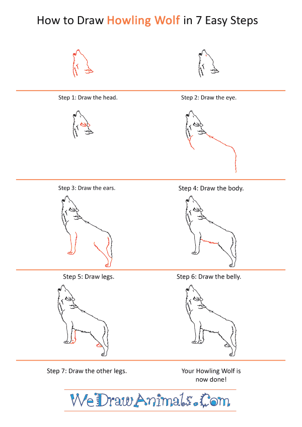 How to Draw a Realistic Wolf Howling - Step-by-Step Tutorial