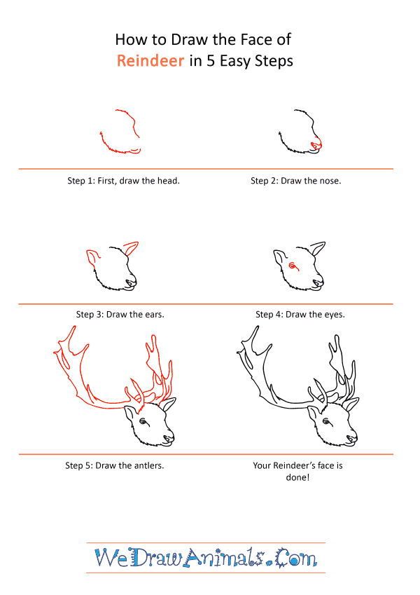 How to Draw a Reindeer Face - Step-by-Step Tutorial