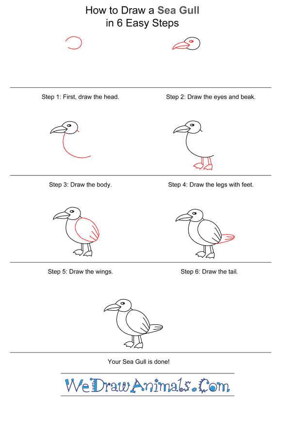 How to Draw a Seagull for Kids - Step-by-Step Tutorial