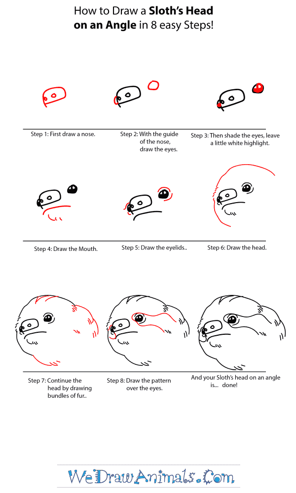 How to Draw a Sloth Head - Step-by-Step Tutorial
