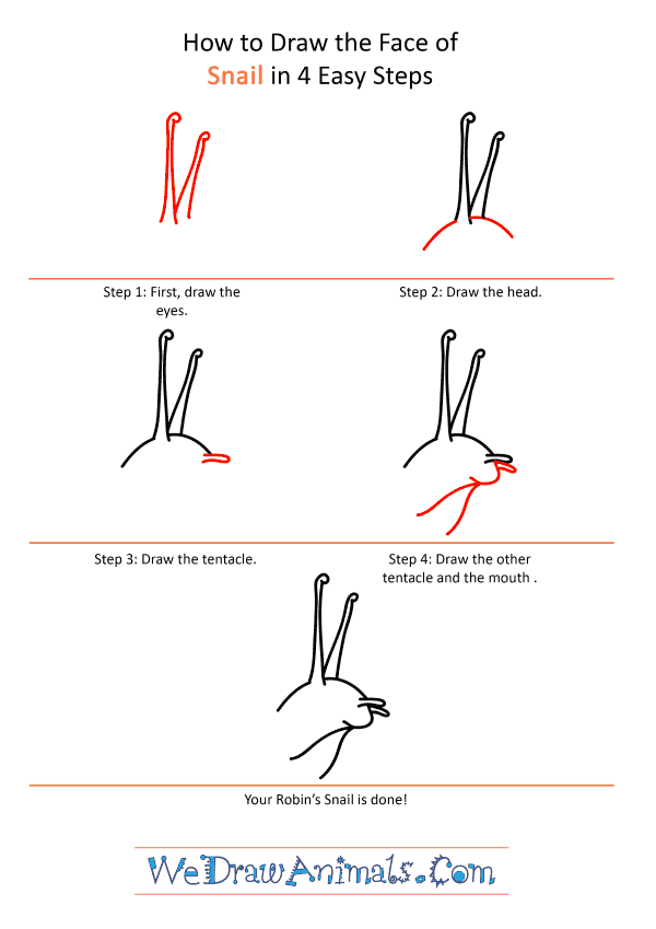 How to Draw a Snail Face - Step-by-Step Tutorial