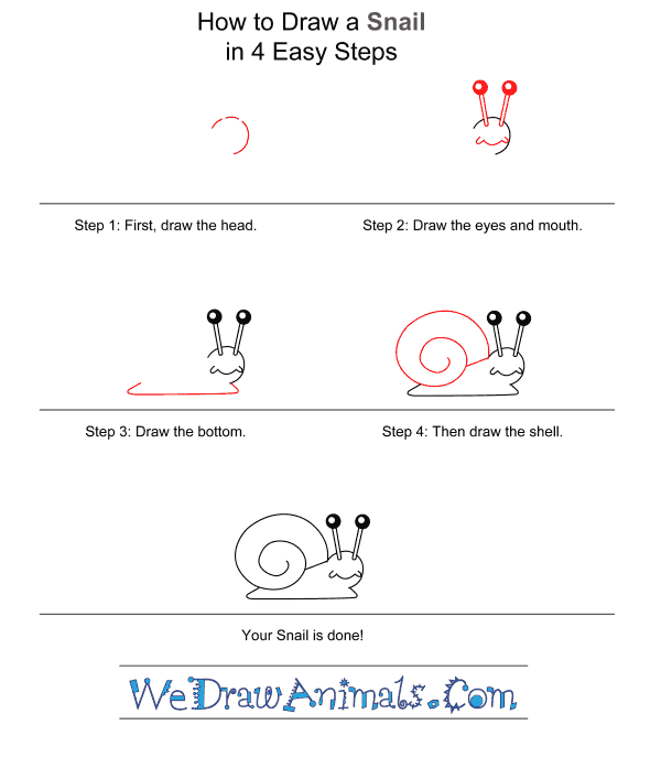 How to Draw a Snail for Kids - Step-by-Step Tutorial