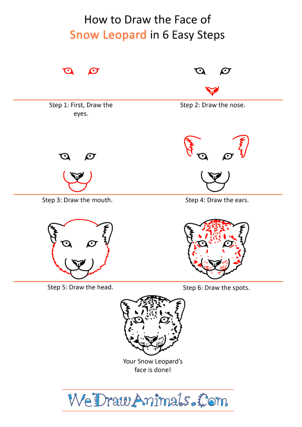 How to Draw a Snow Leopard Face - Step-by-Step Tutorial