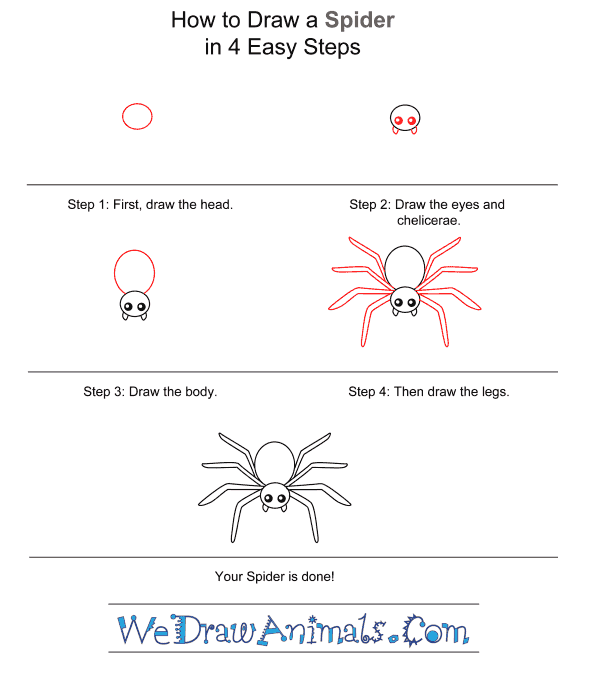 How to Draw a Spider for Kids - Step-by-Step Tutorial