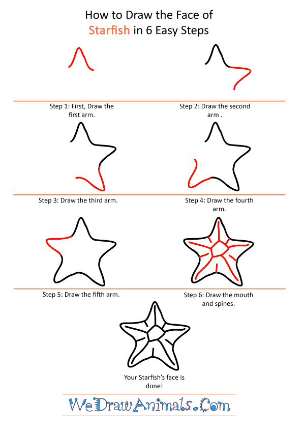 How to Draw a Starfish Face - Step-by-Step Tutorial
