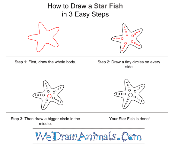 How to Draw a Starfish for Kids - Step-by-Step Tutorial