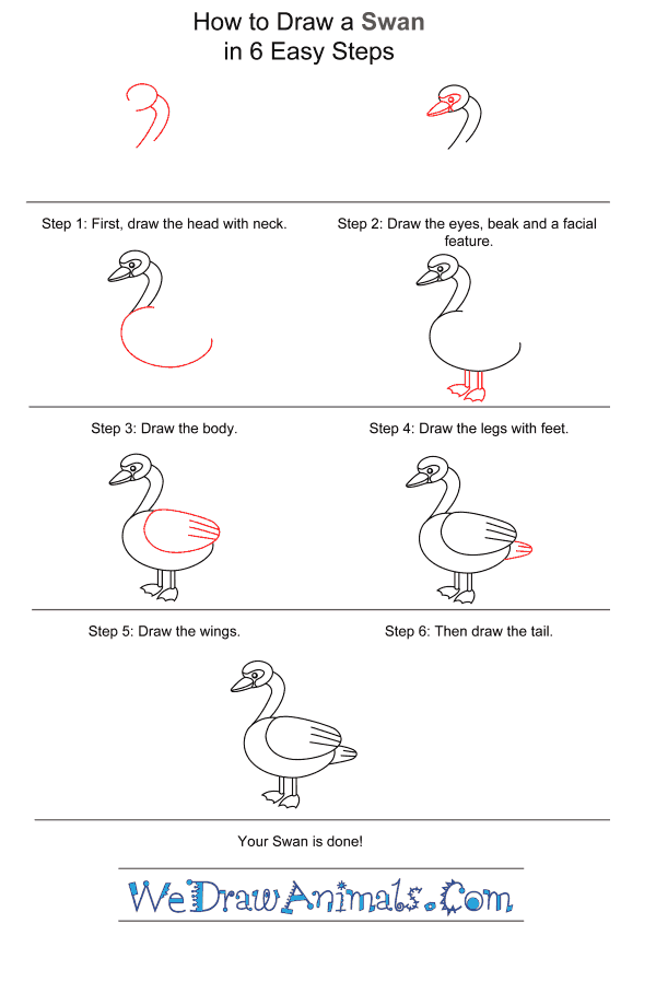 How to Draw a Swan for Kids - Step-by-Step Tutorial