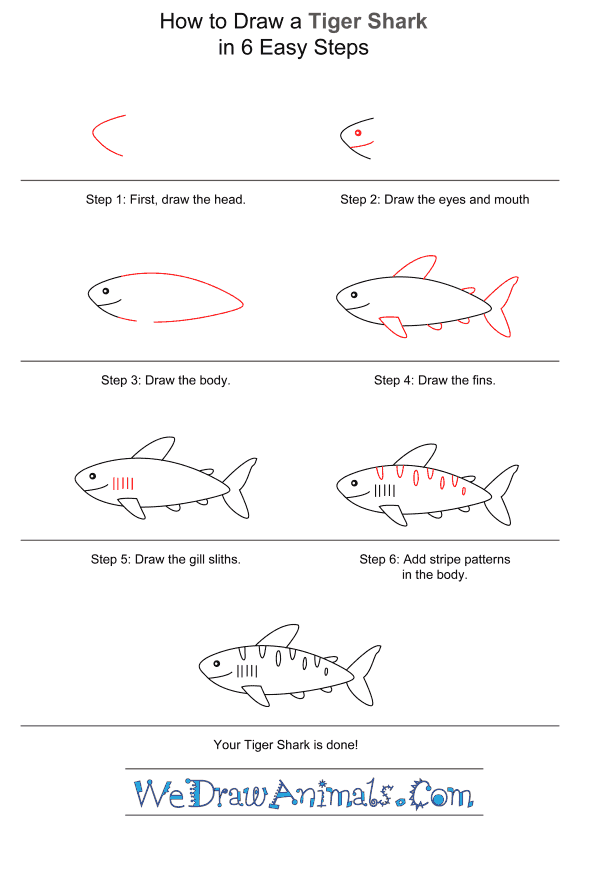 How to Draw a Tiger Shark for Kids - Step-by-Step Tutorial