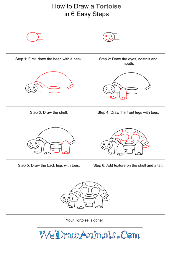 How to Draw a Tortoise for Kids - Step-by-Step Tutorial