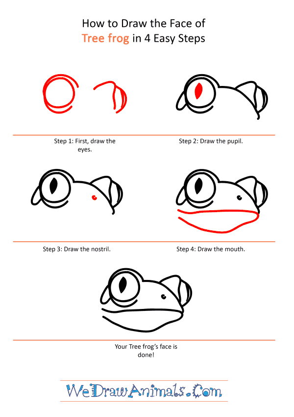 How to Draw a Tree Frog Face - Step-by-Step Tutorial