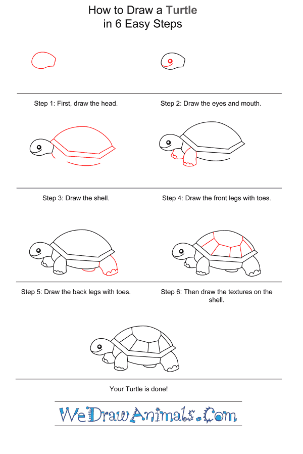 How to Draw a Turtle for Kids - Step-by-Step Tutorial