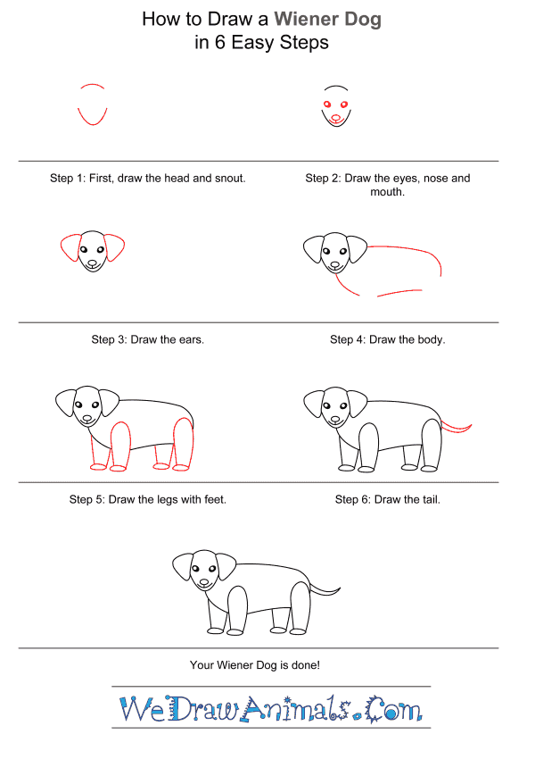 How to Draw a Wiener Dog for Kids - Step-by-Step Tutorial