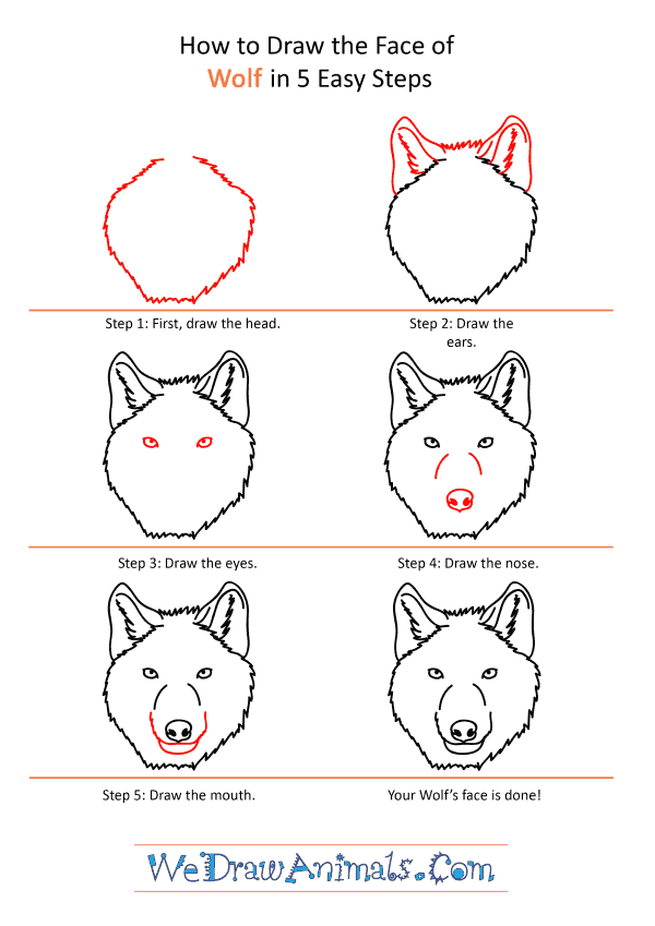 How to Draw a Wolf Face - Step-by-Step Tutorial