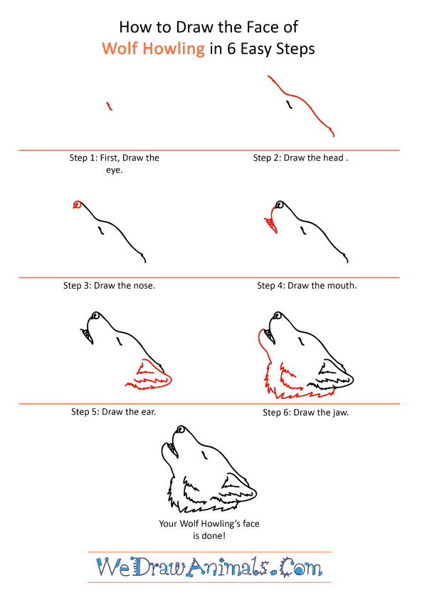 How to Draw a Wolf Howling Face - Step-by-Step Tutorial