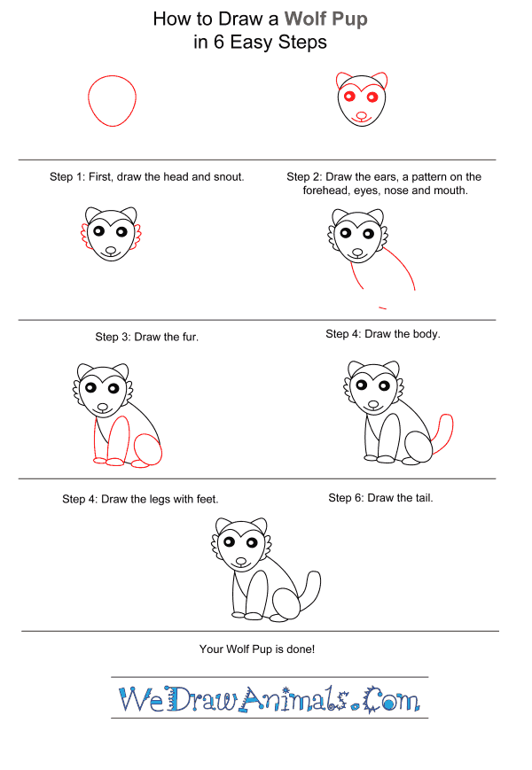 How to Draw a Wolf Pup for Kids - Step-by-Step Tutorial